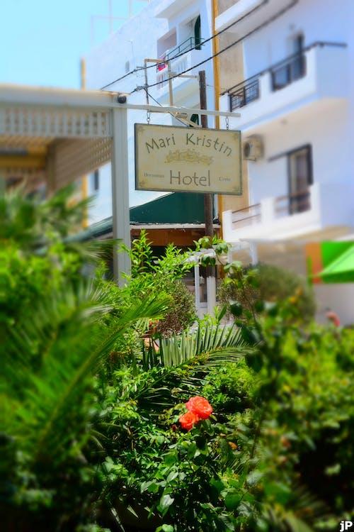 Free stock photo of hotel mari kristin