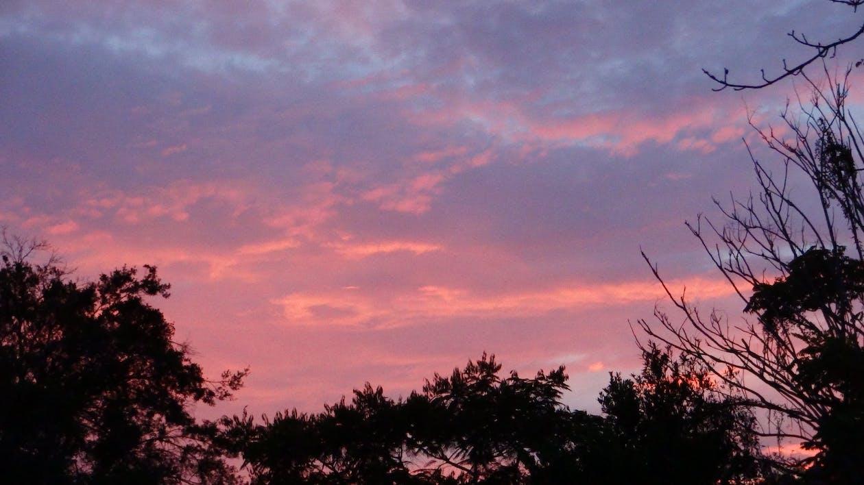Fotobanka sbezplatnými fotkami na tému večer, večerná obloha
