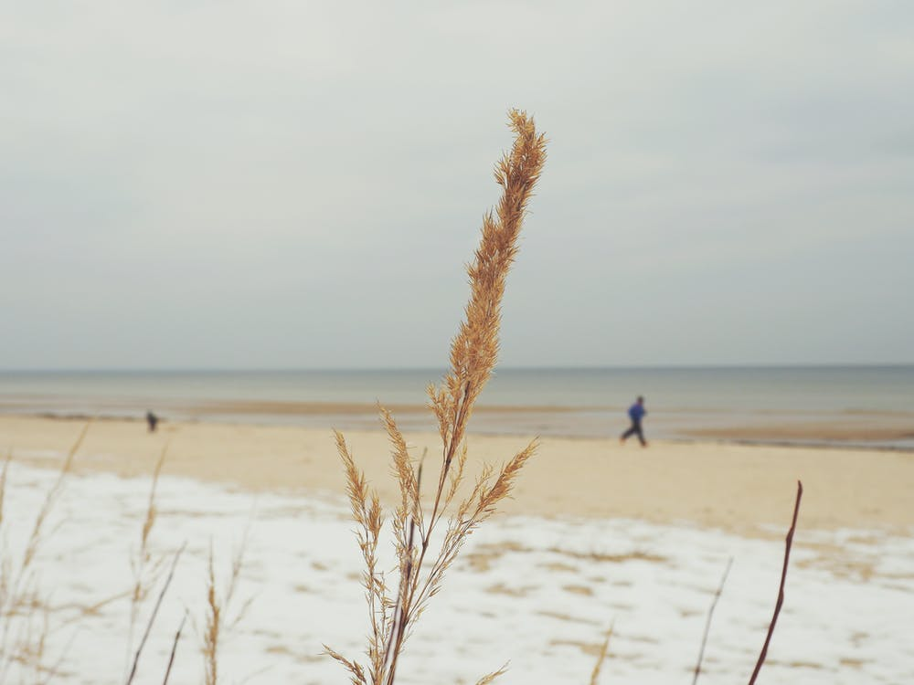 Man Running Near the Sea Shore during Day Time