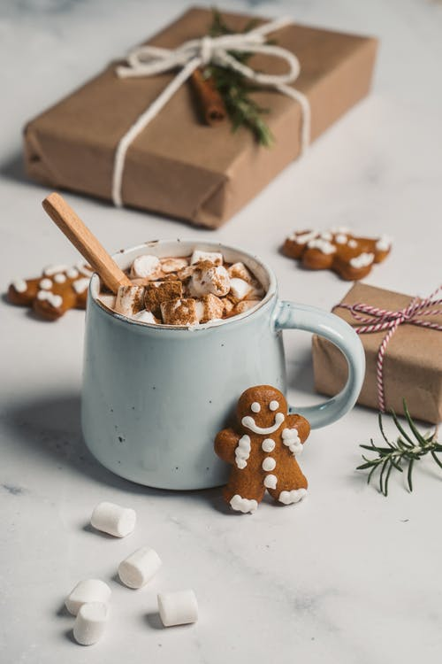 Mug of Marshmallow Drink and Gingerbread