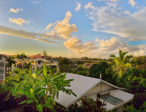 Free stock photo of blue, blue sky, orange sunset