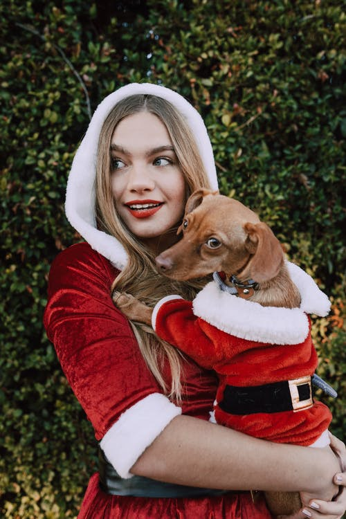 Woman In Santa Outfit Carrying Her Dog Wearing A Santa Costume