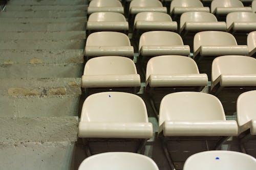 Foto stok gratis kursi, kursi stadion, putih
