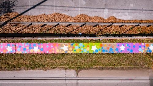 Foto stok gratis alam, atas, beraneka warna