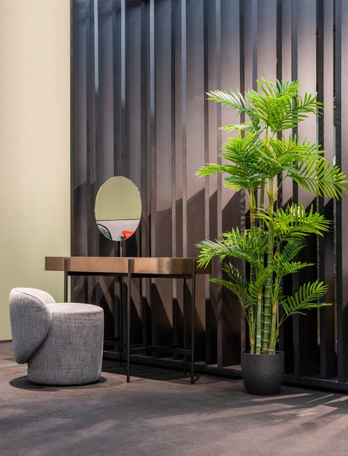 Interior of stylish room with potted palm placed near table with mirror and padded stool