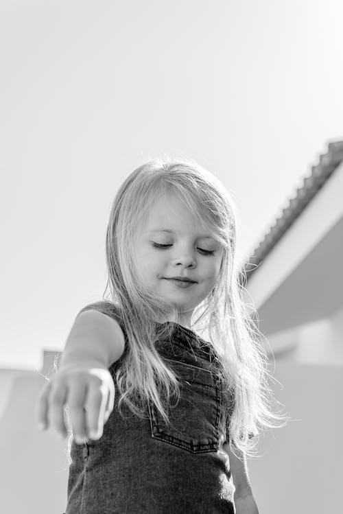 Imagine de stoc gratuită din adorabil, armonie, backlit