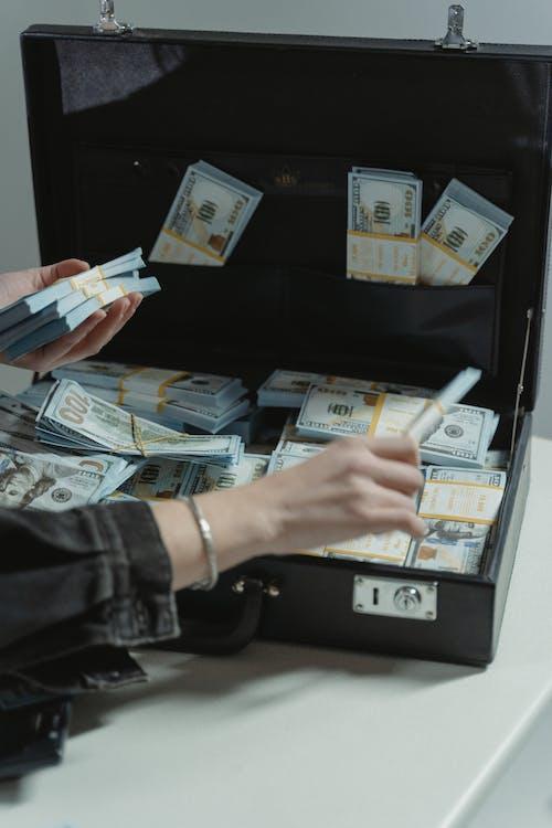 お金, ブリーフケース, 垂直ショットの無料の写真素材