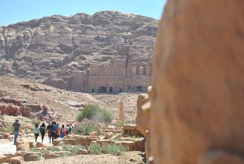Základová fotografie zdarma na téma hnědá, jordan, Jordánsko