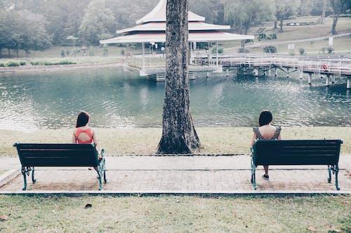 Free stock photo of balanced, bench, distance