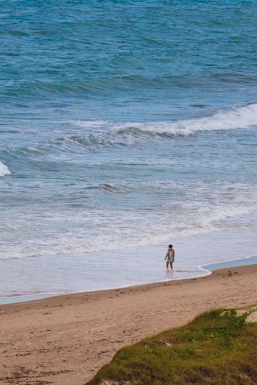 boş zaman, dalga, deniz içeren Ücretsiz stok fotoğraf