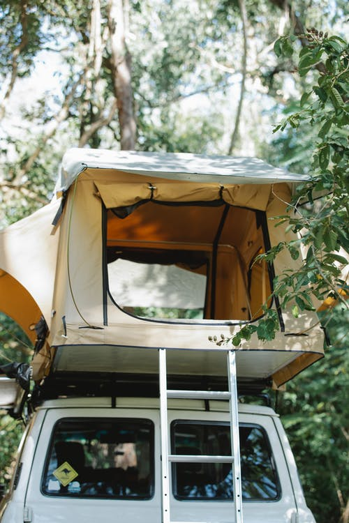 Low angle of camping tent placed on off road car top parked near lush green trees on sunny day in forest