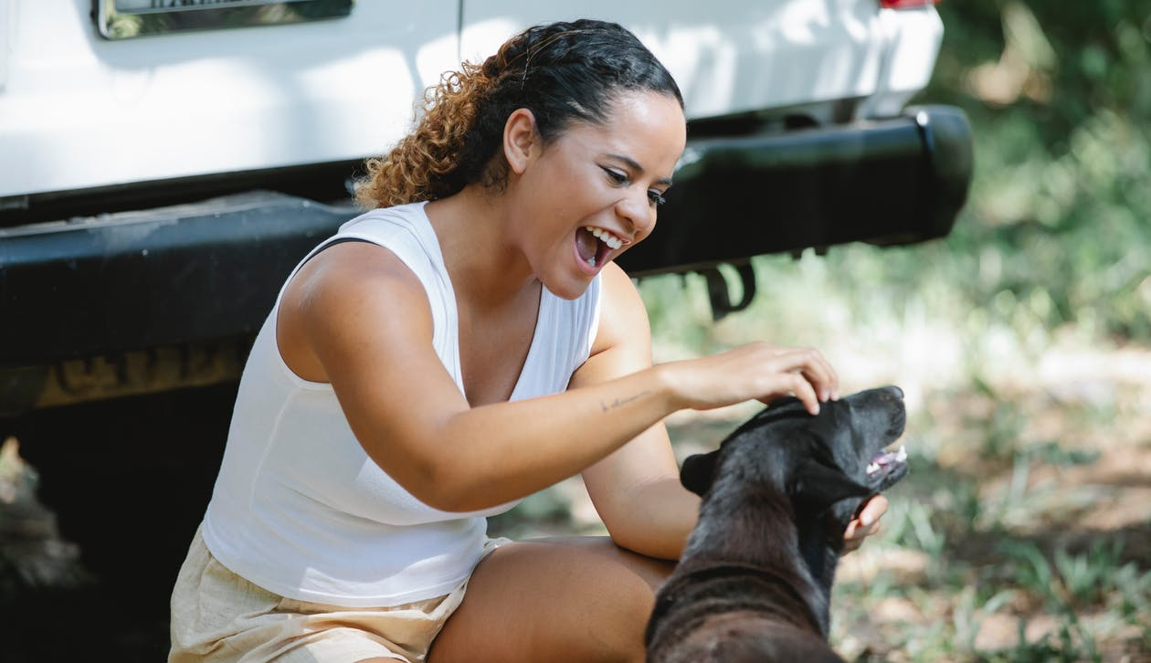 Excited young Hispanic female hiker with curly hair in casual clothes sitting on haunches and yelling while petting adorable mongrel dog during trip in forest on sunny day