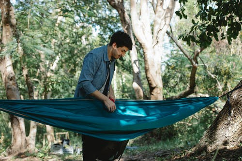 Concentrated man hanging hammock in forest