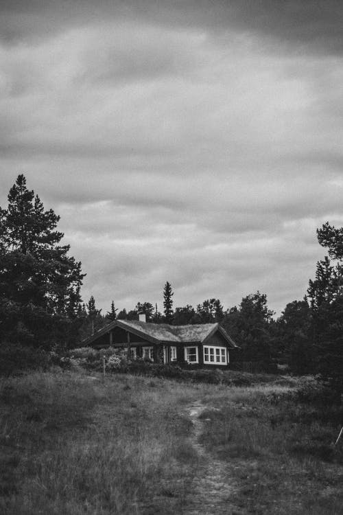 Black and white of aged rural cottage on grassy meadow with lush trees