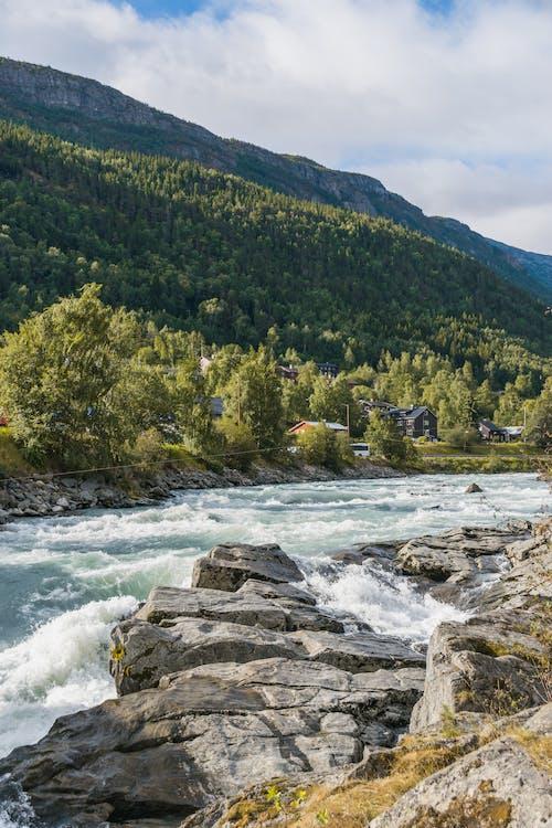 Stream flowing in green mountainous terrain