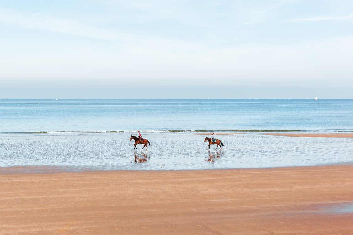 Unrecognizable people riding horses on beach
