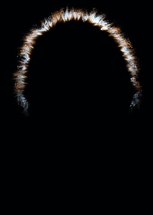 Free stock photo of black, portraits, rim light