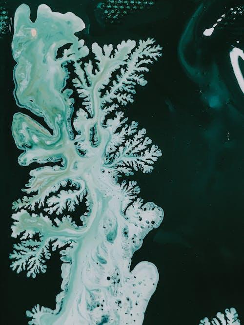 Immagine gratuita di acqua, acrilico, albero