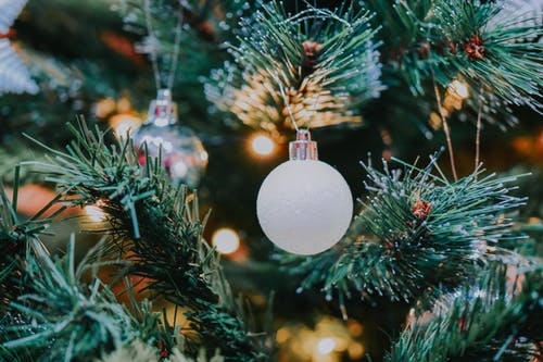 Decorative bauble hanging on coniferous tree branch of Christmas tree with glowing garland during festive holiday celebration in light room