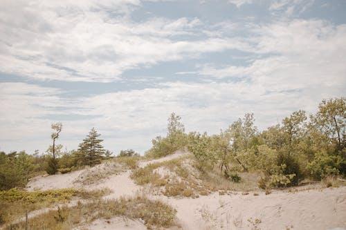 Free stock photo of sand, sand dunes