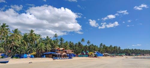 People on Beach Under Blue Sky