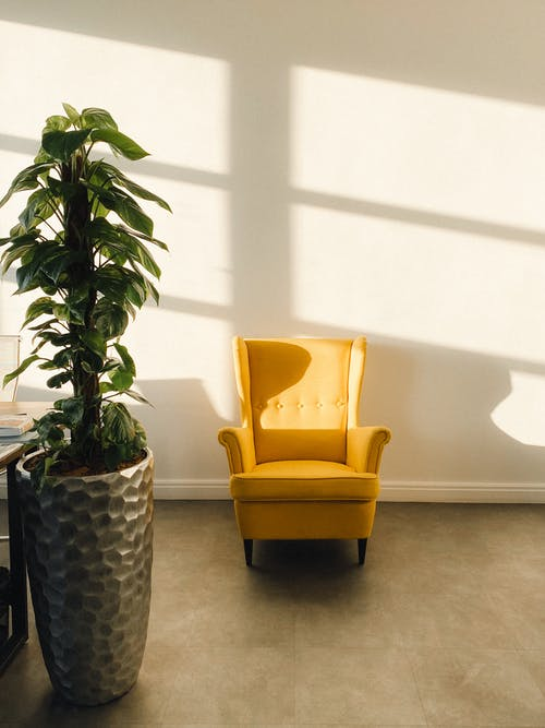 Cozy yellow armchair placed in light spacious room