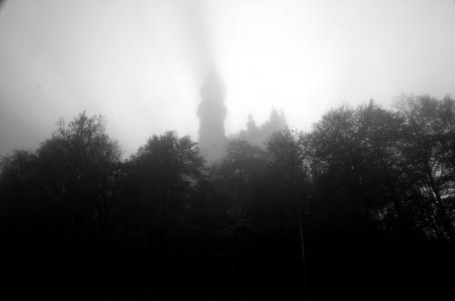 Free stock photo of black&white, fog, nature, Neuschwanstein Castle