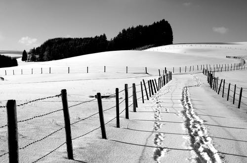 Free stock photo of black&white, bw, fence, footprints