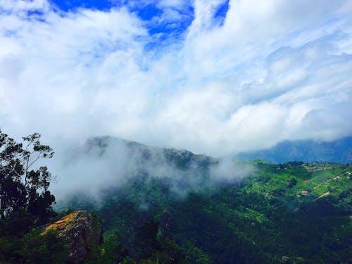 Free stock photo of mist, mountain, natue