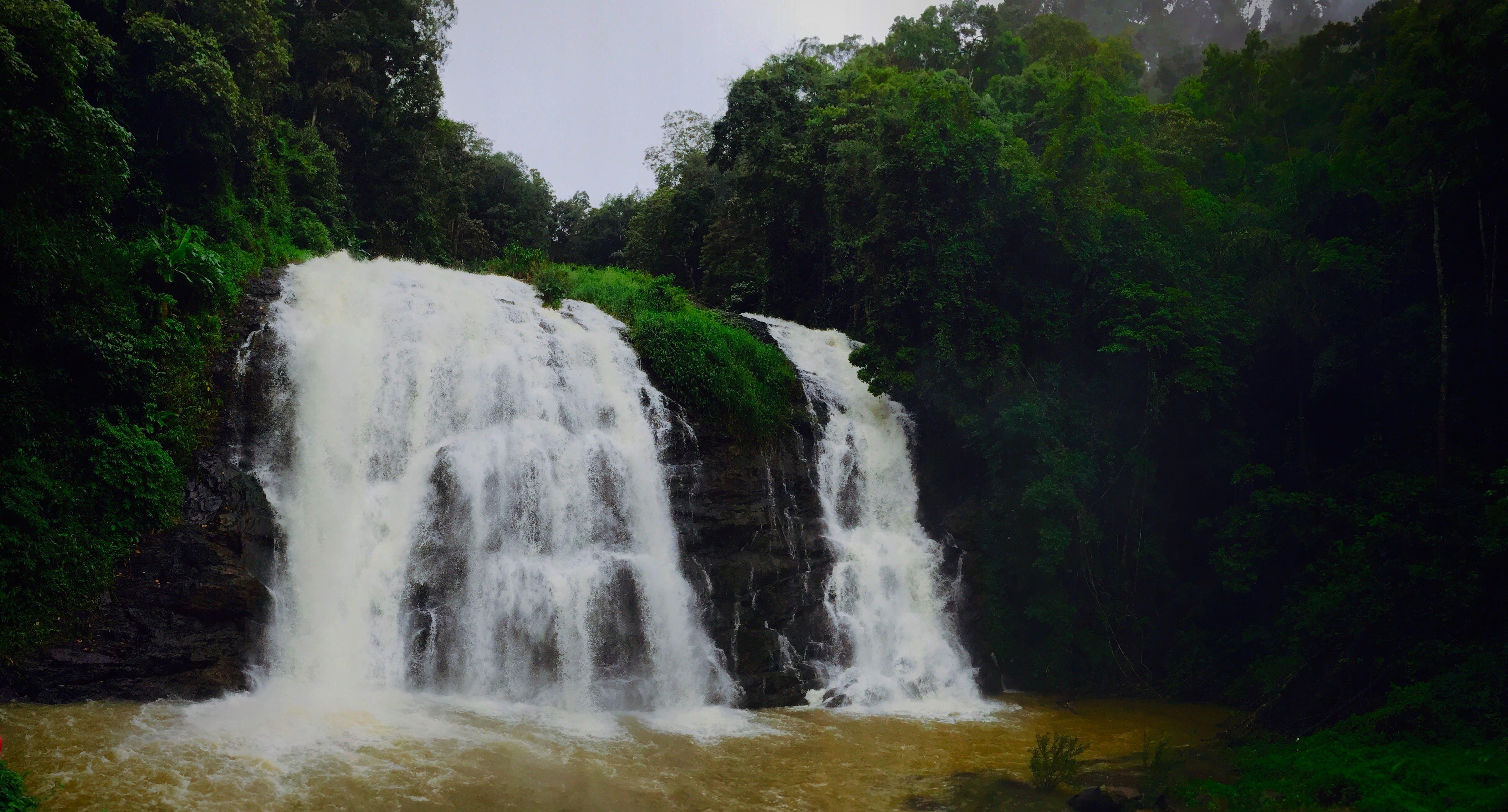 Free stock photo of natue, waterfalls