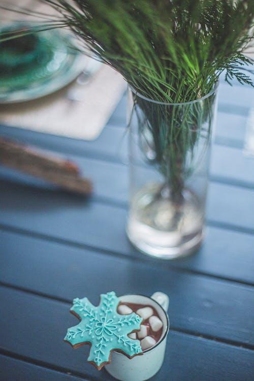 Gratis arkivbilde med blad, blomst, bord