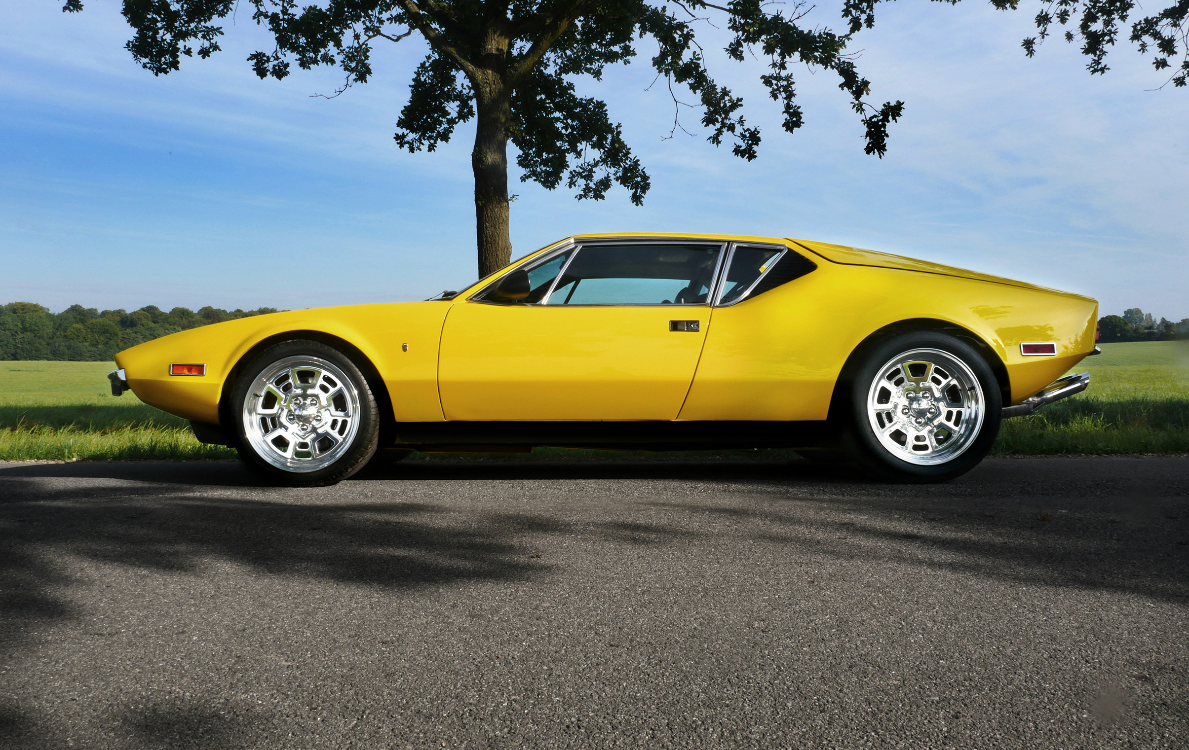 Yellow Sports Car Parked Near Green Leafed Tree