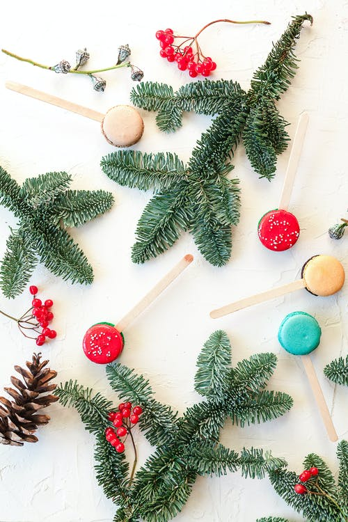 Sweet macaroons and fir twigs on white table
