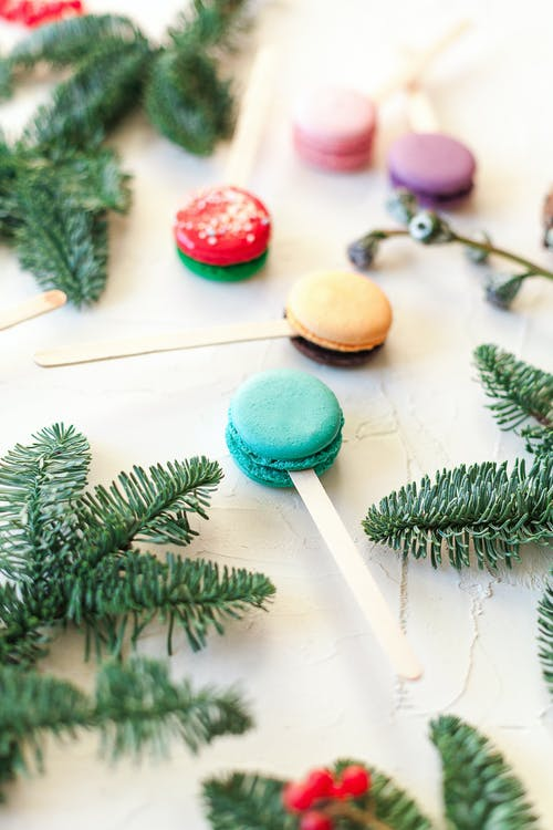 High angle composition of tasty multicolored macaroons on sticks arranged on white table near fir branches