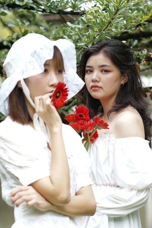 Free stock photo of aesthetic, asian, asian girl