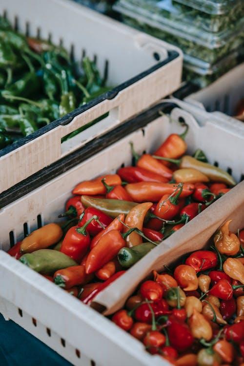 Fotos de stock gratuitas de agricultura, angulo alto, bazar