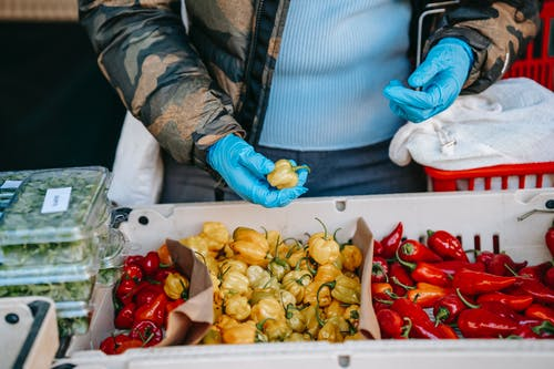 Crop anonymous person in latex gloves carrying market basket and choosing ripe yellow and red capsicums in vegetable supermarket