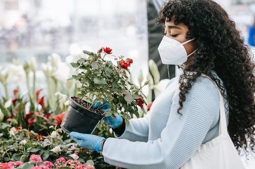 Crop black woman choosing potted flowers in florists shop