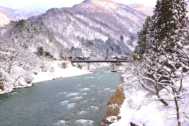 Free stock photo of beautiful, japan, landscape, nature