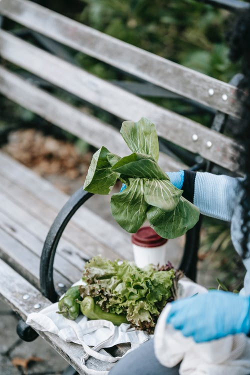 Faceless lady in gloves on street bench with salad leaves
