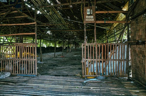 Shabby bamboo construction with wooden fences and weathered roof with thick branches located in rural area in countryside with plants