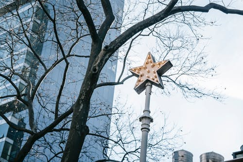 Low angle shining streetlamp in shape of star located in contemporary city district on clear spring day