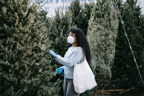 Side view of African American female in protective mask and gloves choosing tall green coniferous tree while standing in market