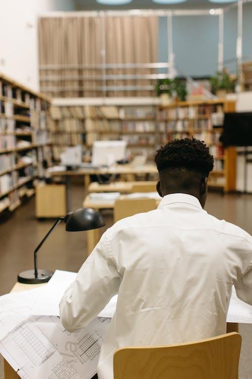 Gratis arkivbilde med afro hår, anleggsarbeid, ansiktsuttrykk