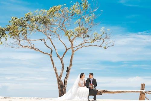 Uomo E Donna Che Baciano Accanto All'albero Marrone