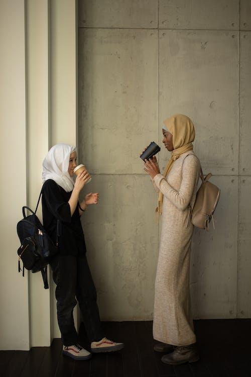 คลังภาพถ่ายฟรี ของ takeaway, กระเป๋าเป้, การศึกษา
