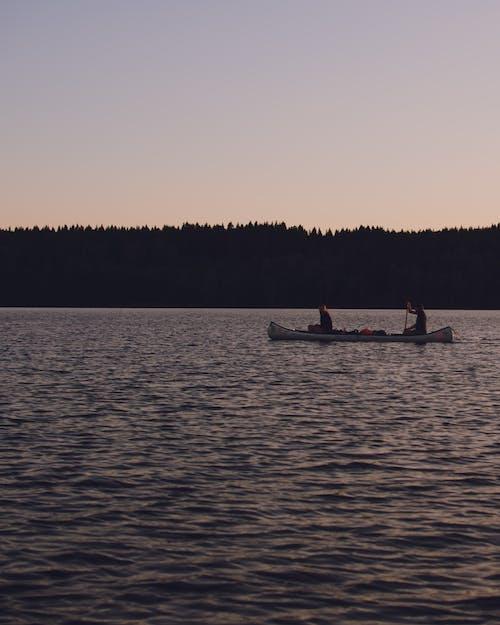 Free stock photo of boats, camping, canoe, canoeing