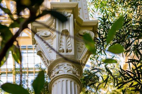 Gratis stockfoto met architectuur, bladeren, bomen, buiten