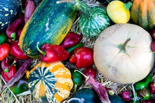 Fotobanka sbezplatnými fotkami na tému čili, farben, farben des herbstes, herbst