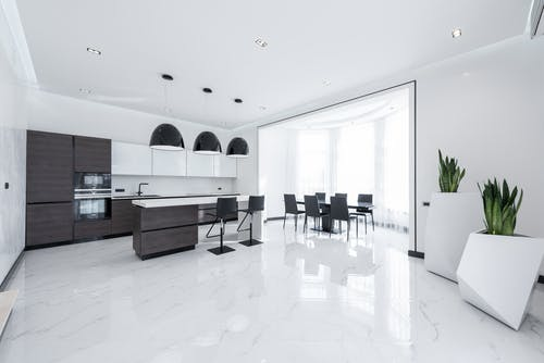 Interior of modern spacious kitchen with minimalist furniture and shiny marble styled floor decorated with creative white pots of fresh green plants
